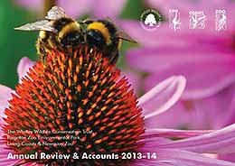 Annual Review & Accounts 2013-14 button