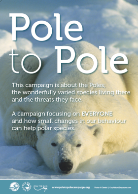 Pole To Pole campaign image